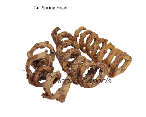 Discount Bird Toys : Buy bird toys parts tail spring head floral exports eco